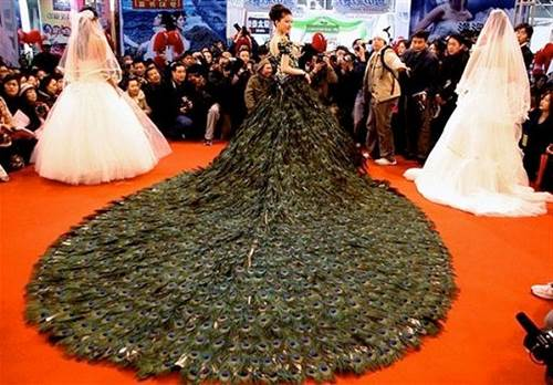 Most Expensive Wedding Dresses 4