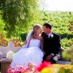 How to Create Your Dream Wedding in Your Own Back Garden